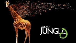 Music Packs - Funky Summer Pack | AudioJungle Download