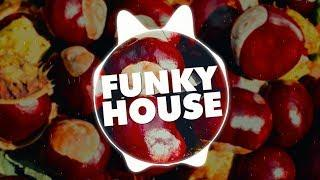 Funky House Samplepack | 1,6 GB Of Kits, Spire Presets, Drums, Loops & More!