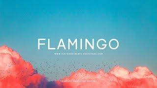 "FREE The Weeknd Type Beat - ""Flamingo"" Ft. SZA 
