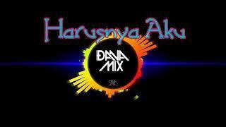 Harusnya Aku ( Dana Mix ) Funky Break Dj