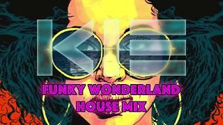 FUNKY WONDERLAND HOUSE MIX (Pioneer XDJ-RX 2)