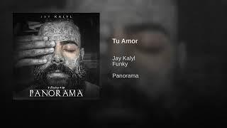 Jay Kalyl Ft Funky - Tu Amor (Reggaeton Cristiano 2018) PANORAMA
