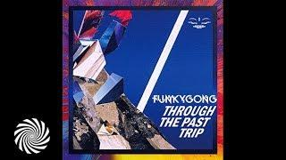 Funky Gong - Through the Past Trip  (Filteria Present Remix)